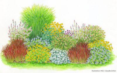 Gräser-Dreiklang im Blütenmeer - 15er Kollektion